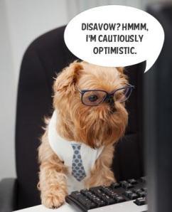 disavow-link-tool